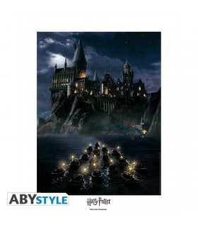 p ster edici n limitada de 40 x 50 castillo de hogwarts harry potter. Black Bedroom Furniture Sets. Home Design Ideas