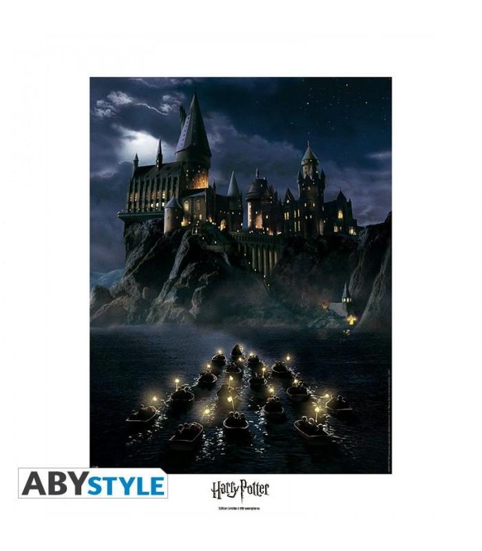 p ster edici n limitada de 40 x 50 castillo de hogwarts harry potter. Black Bedroom Furniture Sets. Home Design Ideas