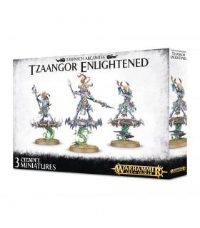 Tzeentch Arcanites Tzaangor Enlightened - Age of Sigmar