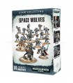 Start Collecting Space Wolves  - Warhammer 40.000