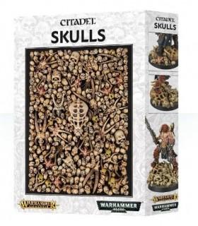 Colección de cráneos para ambientación y peanas Citadel Skulls - Citadel