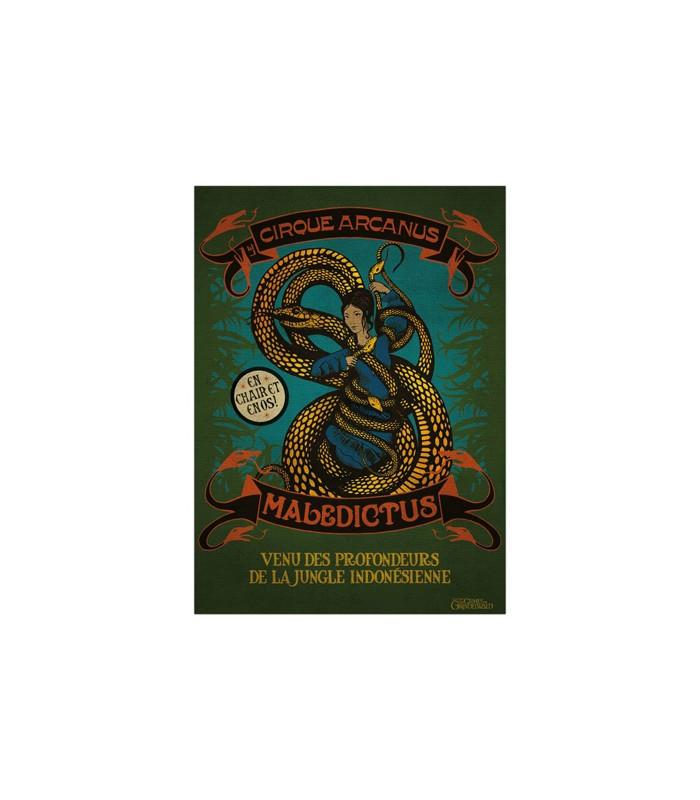 Póster de Maledictus - Animales fantásticos y donde encontrarlos