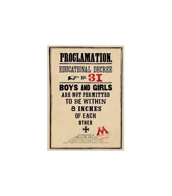 Póster Decreto de enseñanza nº31 - Harry Potter