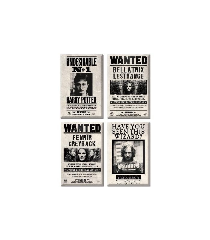 Set de imanes de SE BUSCA - Harry Potter