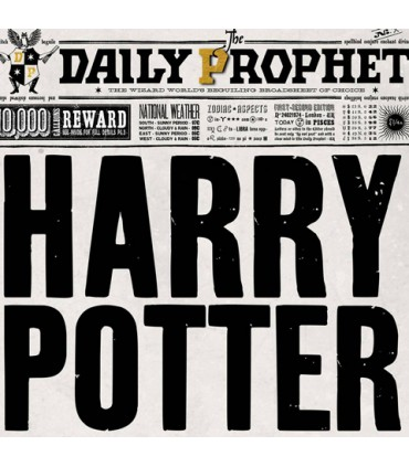 Póster de la portada de Harry en El Profeta - Harry Potter
