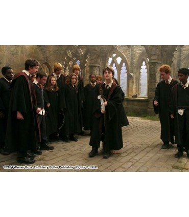 Escoba Saeta de Fuego Quidditch (150cm) - Noble Collection