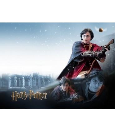 Escoba Nimbus 2001 Quidditch (144cm) - Noble Collection