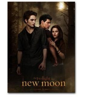 """Puzle """"One Sheet"""" Poster 1000 Piezas Luna Nueva (New Moon)"""
