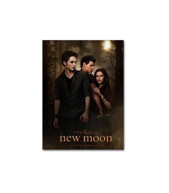 """Puzzle """"One Sheet"""" Poster 1000 Piezas Luna Nueva (New Moon)"""
