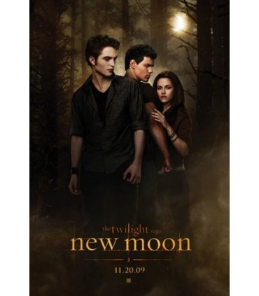 "Funda Almohada Cojín ""Edward, Jacob y Bella"" Luna Nueva New Moon"