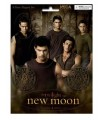 Imanes Clan Quileute Luna Nueva Crepusculo New Moon Twilight