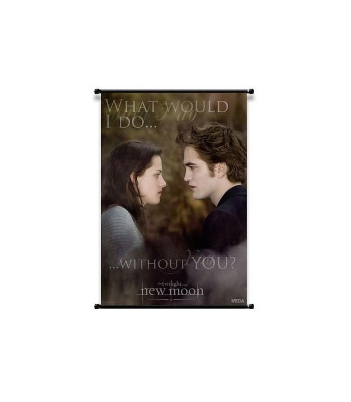 Poster Enrollable Edward y Bella Luna Nueva Crepusculo New Moon