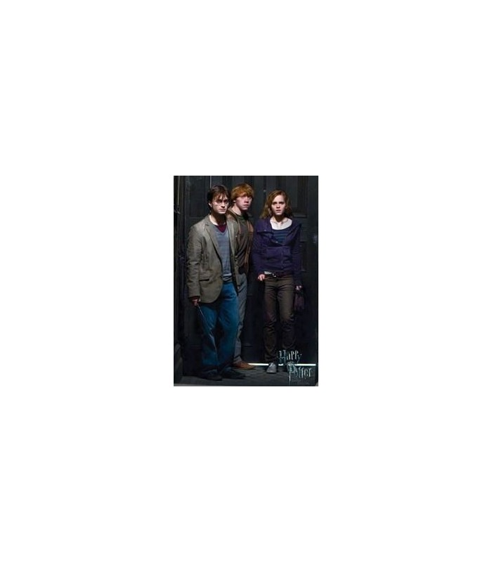Lienzo Gryffindor de Harry Potter y las Reliquias de la Muerte