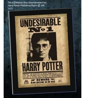 Harry Potter Cartel Undesirable N°1 (Indeseable Nº 1) Poster
