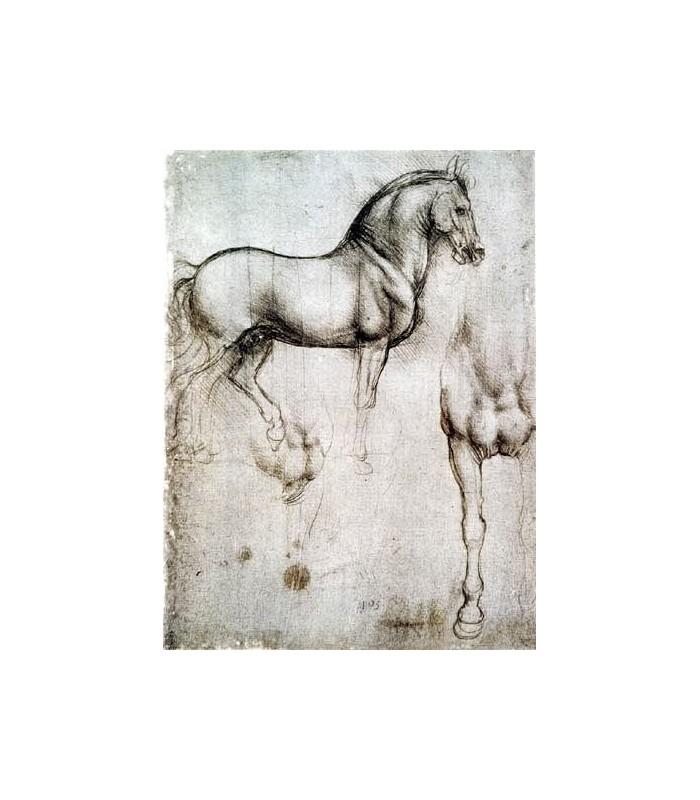 Marca Páginas Puntos de Libro de Leonardo Da Vinci