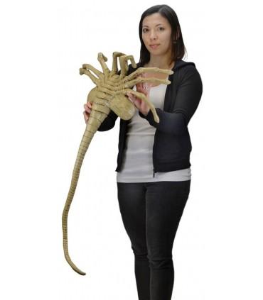 Face hugger escala 1:1 de 105 cm - Aliens